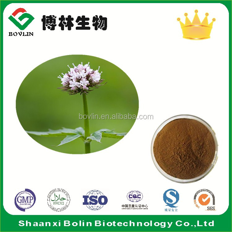 Manufacturer Supply Valerian Root Extract Powder Valeric Acid 0.4%