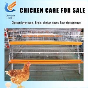 Low Price Laying Battery Hens Cage For Sale