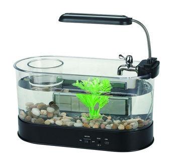 Supply Table Basse Mini Aquarium Fish Tank View Aquarium Oem