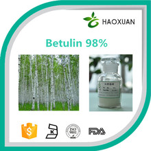 Birch bark extract Betulin 98%