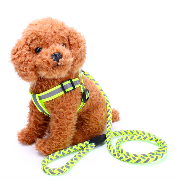 Amazon Best Seller Round Rope Durable Nylon Dog Bungee Leash with Soft Handle