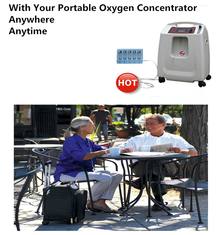 RM-5AH home and travel oxygen concentrator portable