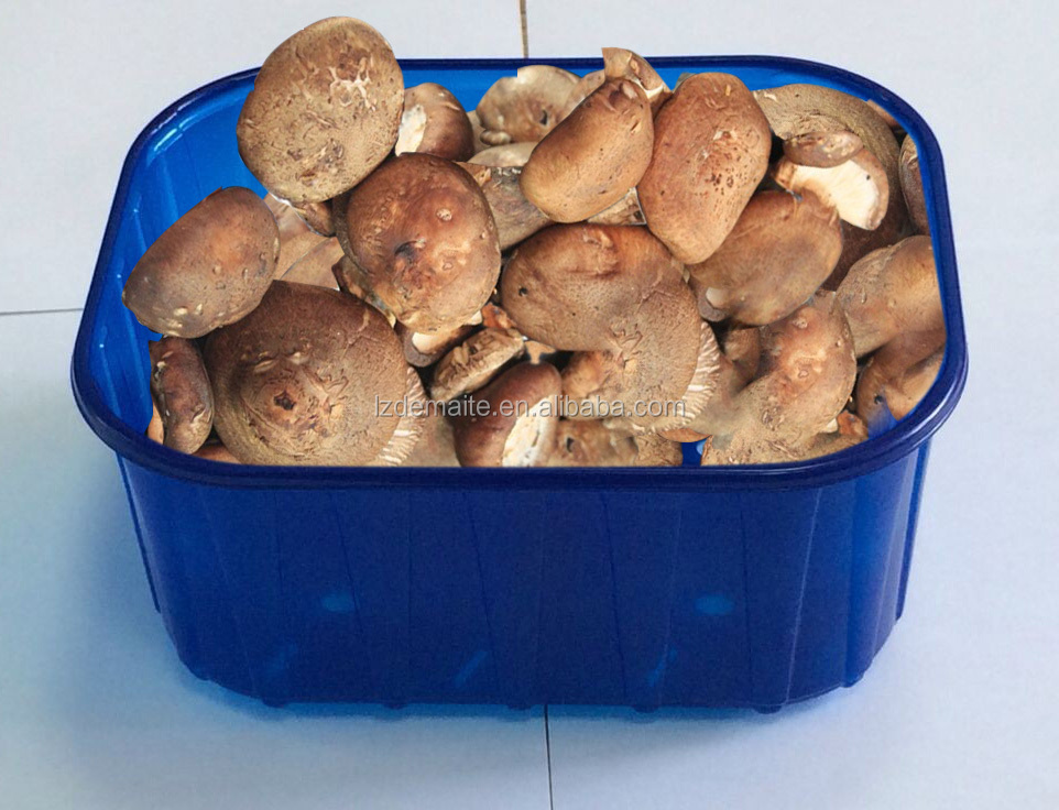 DM-China Alibaba Gold Supplier Water-Absorbing New Technology Food Contact PP Plastic Mushroom Punnet with High Qulaity