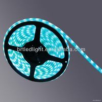 womens hot sex images smd5050 led strip