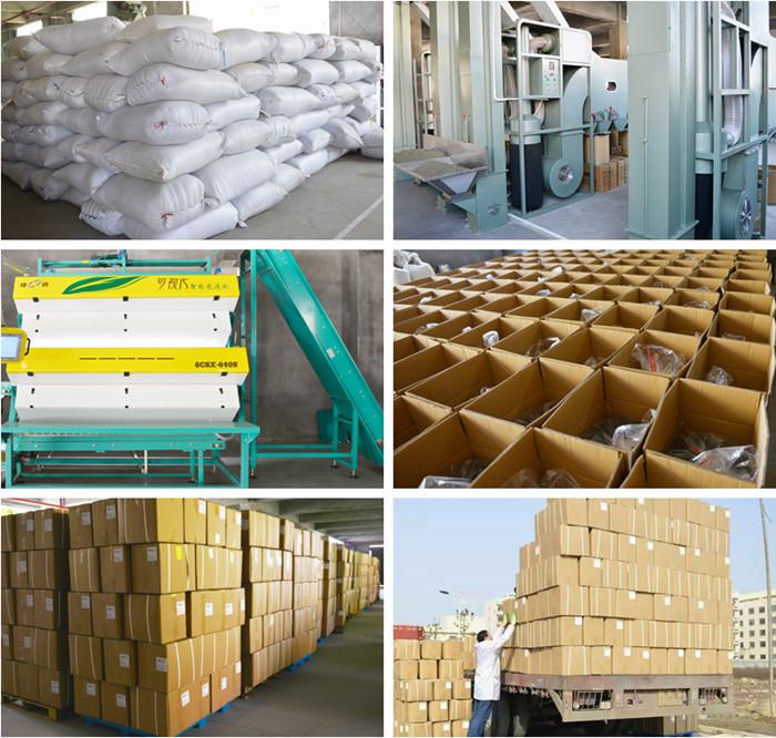 High Quality Selected Eu Standard Tie Guan Yin Organic Oolong Tea Factory supply - 4uTea | 4uTea.com