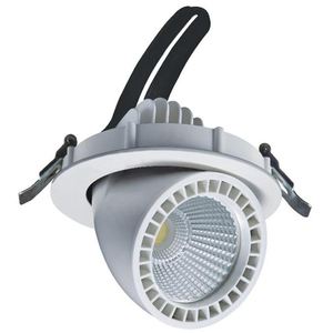 30w 2.4G wireless CCT change and dimmable gimbal led downlight