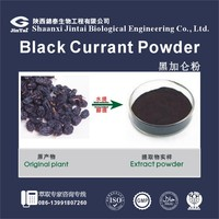 factory offer bulk 25% black currant extract
