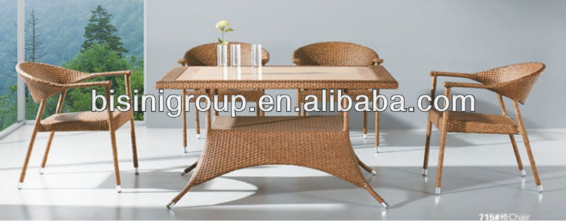Dining Room/Rattan/Wicker Furniture (BF10-R44)