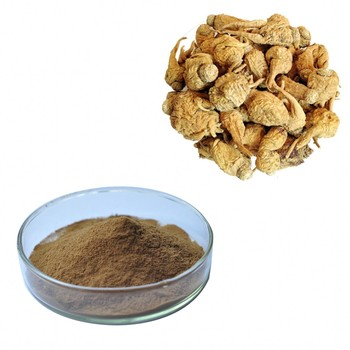 Test by HPLC Maca Extract /Maca Macamides 4%