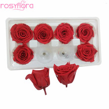 Everlasting Ecuador Coloured Single Preserved Eternal Roses with Long Life