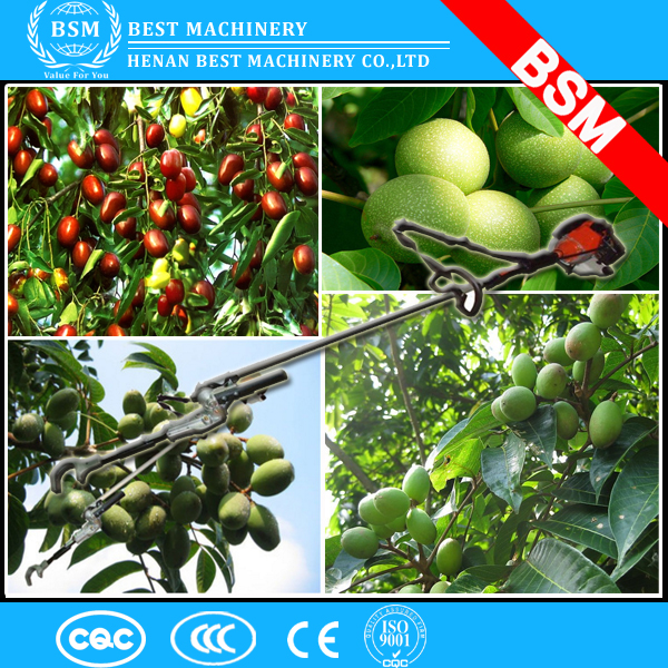 Hot Sale hazelnut harvesting machine / green walnut shaking machine/green walnut shaker