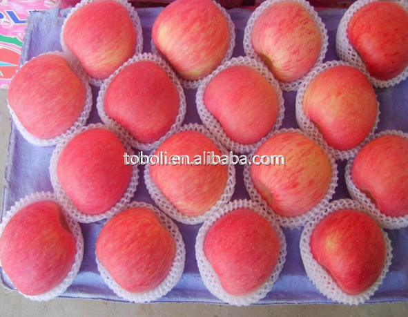 Sweet Yantai Fuji Apples with 80-90% redness