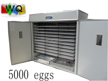 Incubator prices india 5000 chicken eggs, View Incubator prices india,  Weiqian Incubator prices india Product Details from Dezhou Weiqian Import &
