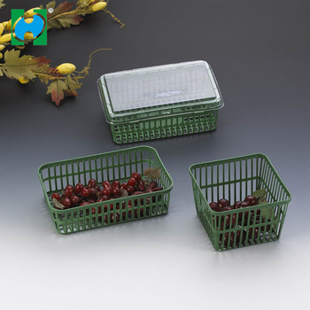 Take Away Reusable Plastic Vegetable Fruit Salad Container