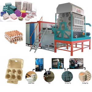 paper pulp molding egg tray machine/metal drying line/diesel as drying fuel Algeria
