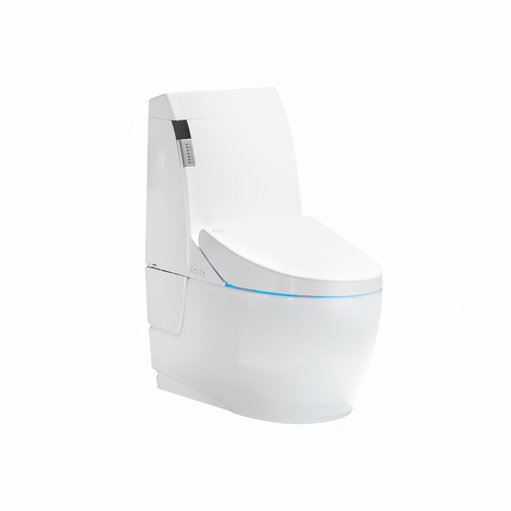 Promotional floor mounted one piece plastic toilet bowl for human asian smart toilet
