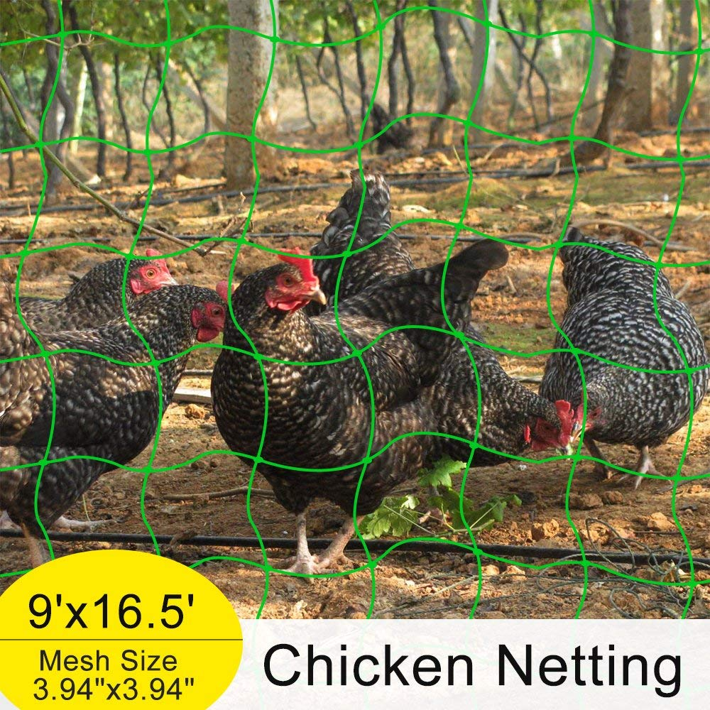 "Mr.Garden Netting Reinforced Edge Support for Climbing Plant Trellis Netting Garden Netting,Chicken Netting,Poultry Fence, Green 3.9""-27 W9'xL16.5'"
