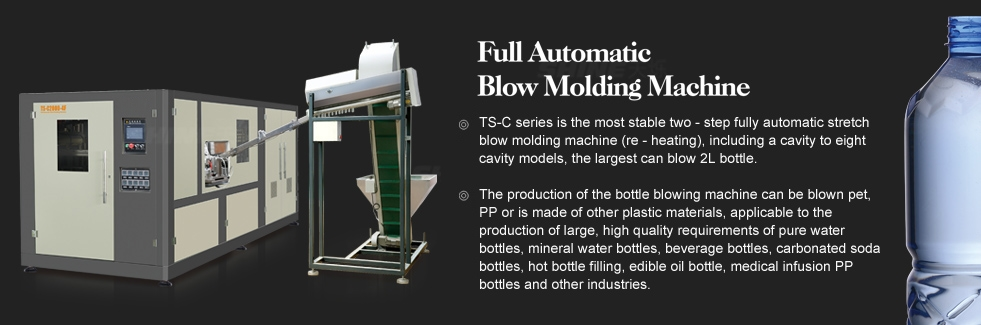 Automatic Stretch PET Bottle Blowing Machine with Preform Manual Loading