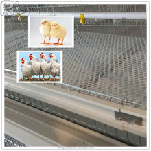 hot-sale H type broiler chicken cages in Kenya