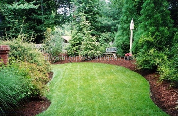 Baltic Pine Bark Mulch For Garden Buy Pine Bark MulchWood Chips