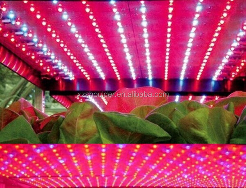 16w Led Plant Lamp Hydrponic Grow Light Bar Strip For Garden ...