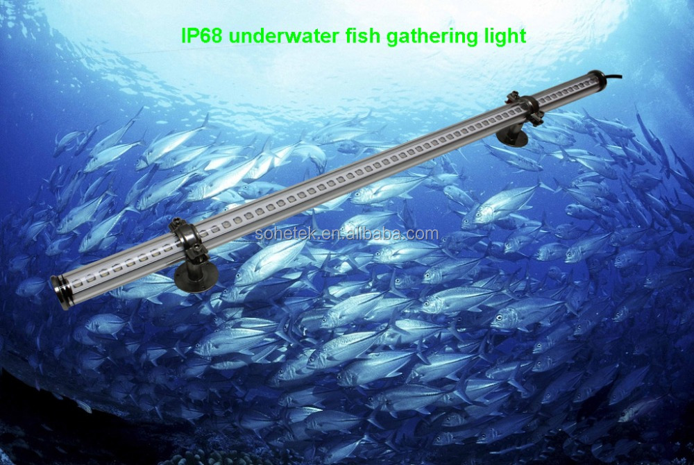 led fish attracting fishing light, led fish attracting fishing, Reel Combo