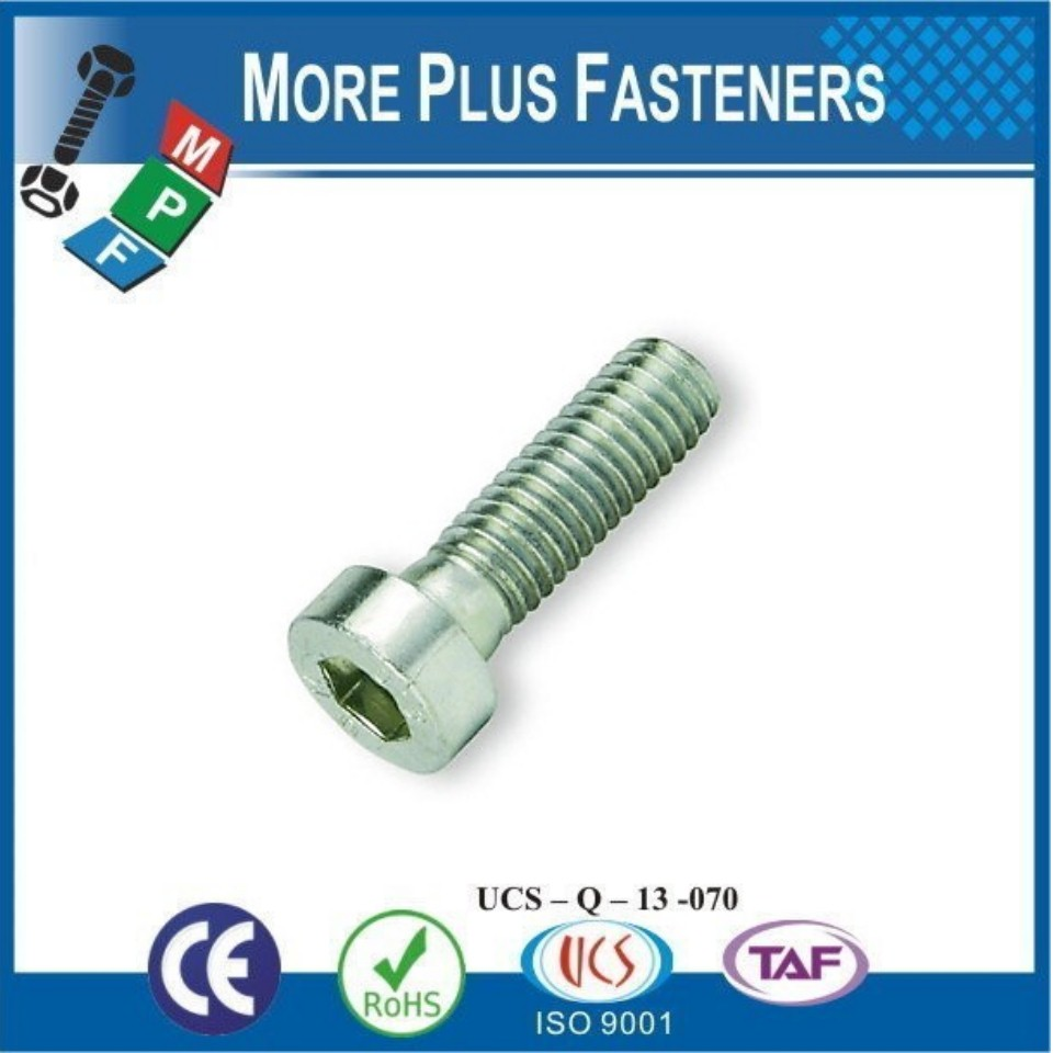 Made in Taiwan Hexagon Socket Low Cylindrical Head Cap Screw DIN 7984 Steel