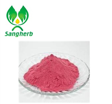 Organic Yumberry Juice Powder Supplier