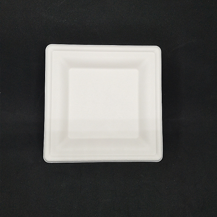 Wholesale 4.15 Inch Small Size Sugarcane Bagasse Disposable degradable ECO Snacks Paper Plates Square With Handle