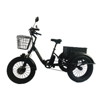 AIMOS 2018 New design Three Wheels Electric bike Cheap Electric Tricycle for sale