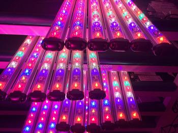 48 Led Strawberry Grow Light Bar Hydroponics Vertical Garden For