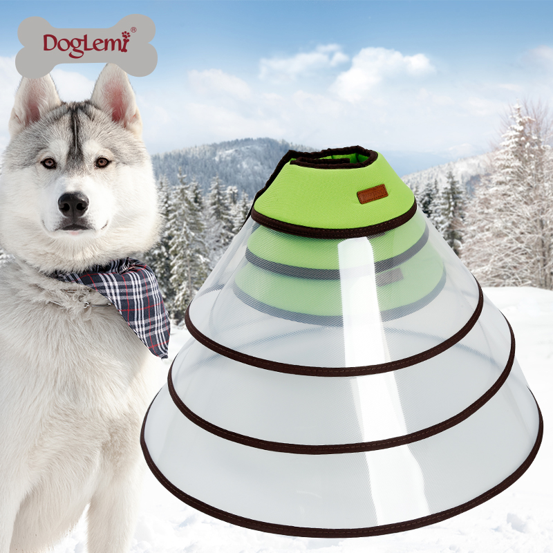 2017 New product Extra Large Pet Health Recovery Elizabethan Collar