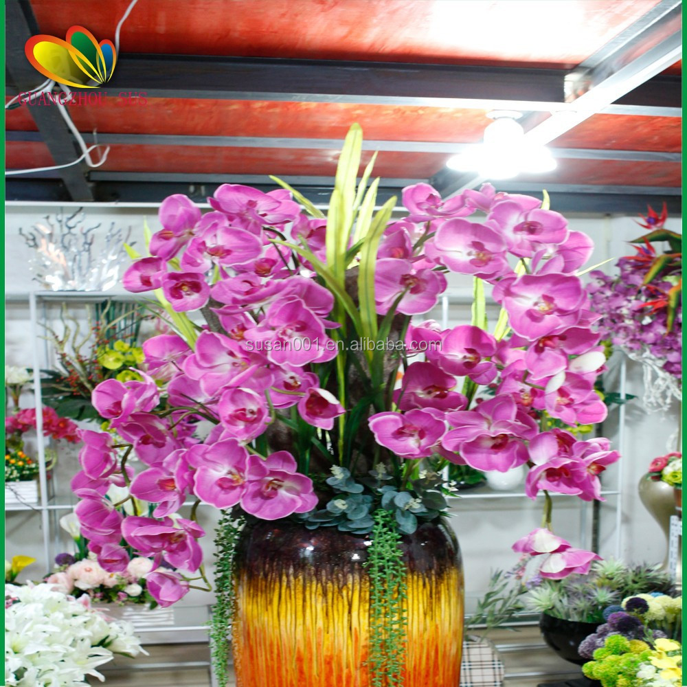 Orchid Tree Wholesale, Tree Suppliers - Alibaba