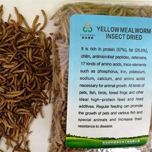 Dried Fish Worm-Dried Fish Worm Manufacturers, Suppliers and