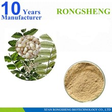 High Quality Natural Boswellia Serrata Extract