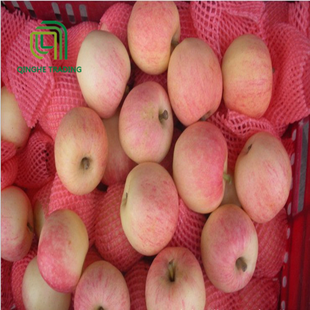 wholesale hot selling fresh new brand delicious gala apple