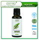 [MISSY] OEM/ODM Private Label Natural Organic Cypress Therapeutic Grade Essential Oil