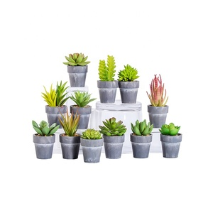 New design custom decorative small mini potted fake succulent artificial plant in pulp flowerpot