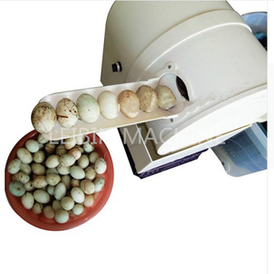 Brush washing egg cleaner machine, cleaning dirty eggs machine, egg washer and cleaner