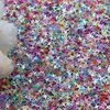/product-detail/wholesale-colorful-4mm-glitter-4-point-star-flakes-loose-sequins-diy-scrapbooking-wedding-nail-sequins-art-decoration-60865953680.html