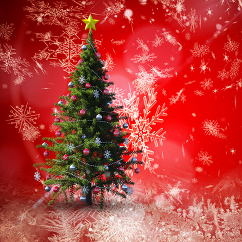 Attractive Photography Backgrounds Fashion Christmas Tree ...
