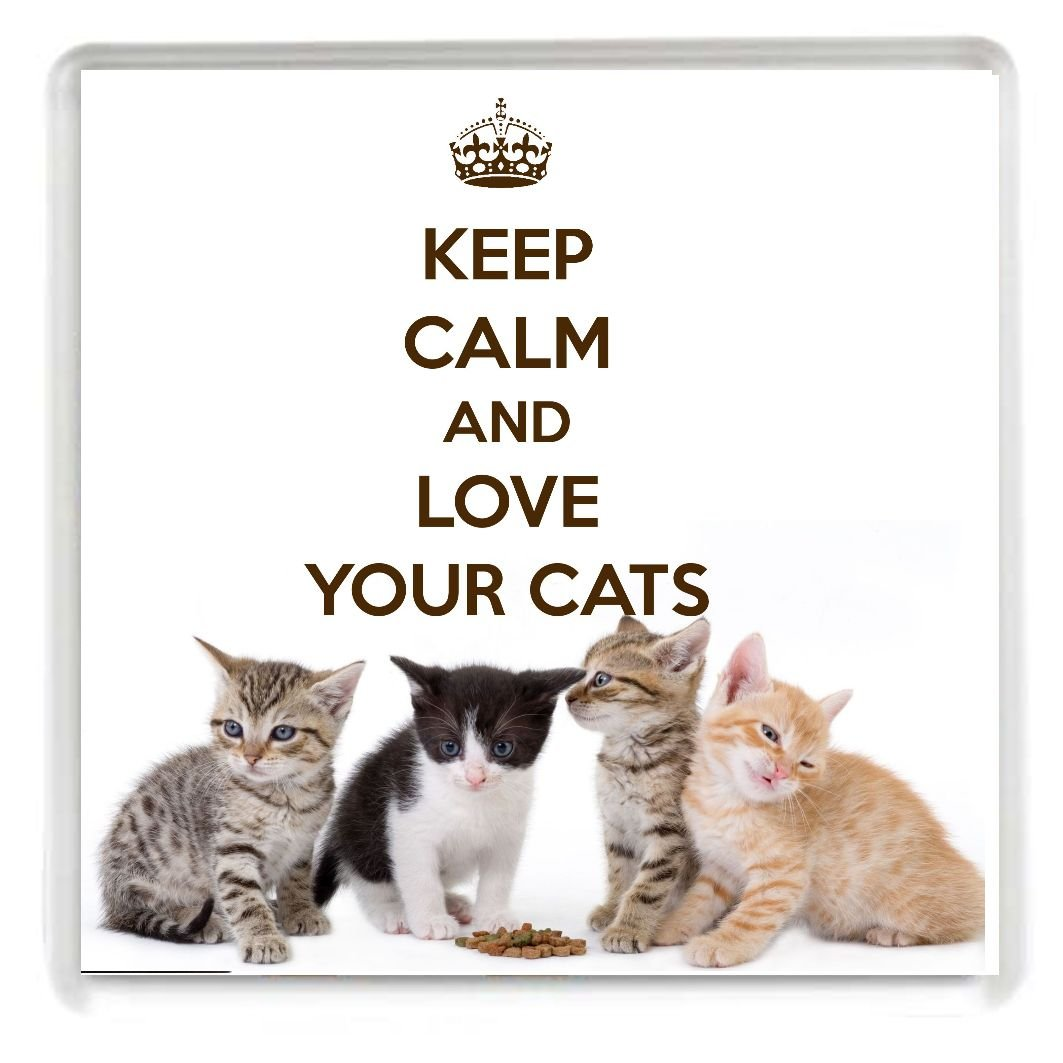 get quotations keep calm and love your cats drinks coaster printed on an image of four cute kittens - Christmas Names For Cats