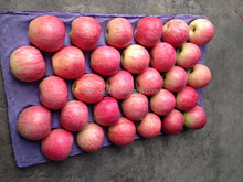 Bulk fresh red qinguan apple from China
