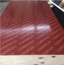 12mm China Birch Film Faced Poplar Core Plywood Boards