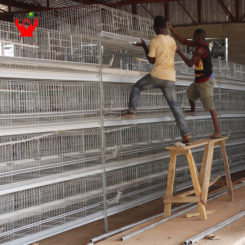 Yonggao Farming hot dip galvanized high end quality chicken cage system