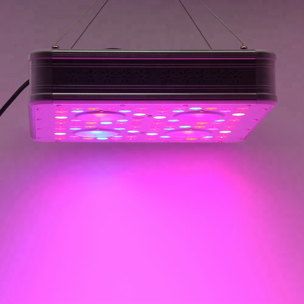 Led Light84x Pro Spectrum King Menards Ideagrow 320w Cob Full 3 Way Switch Grow Light Buy Lightcob Lightfull