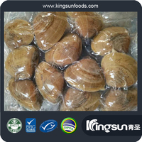 High quality Frozen New Arrival Vacuum short necked clam with half shell