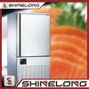 Commercial Restaurant Stainless Steel 2 Door Upright Balst Fridge Deep Freezer