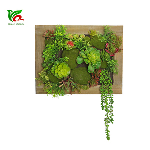 Photo Frame Design 46*36 cm Artificial Wall Decoration Succulent Artificial Plant Wall For Home Decor