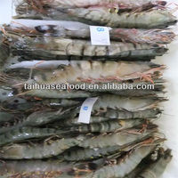fresh frozen shrimp and simply seafood